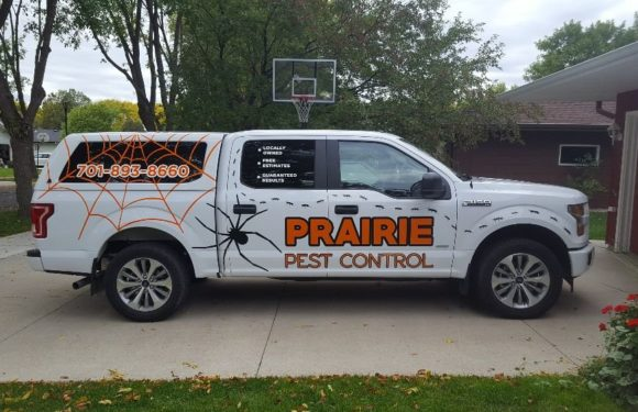 Best Options for Pest Control for Commercial Warehouses
